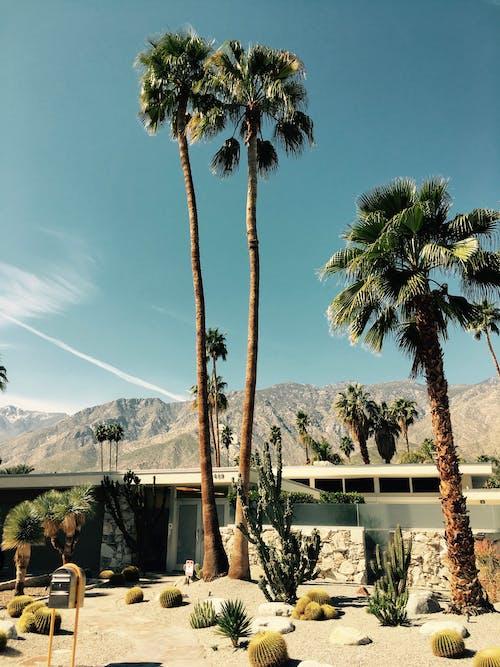 Бесплатное стоковое фото с активный отдых, горы, горячий, гостиница
