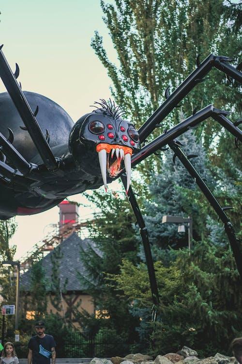 Foto stok gratis laba-laba, menakutkan, takut