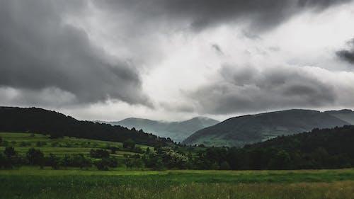 Foto stok gratis awan gelap, gelap, hijau tua, kabut