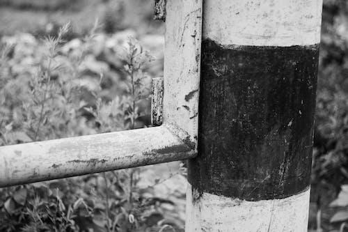 Безкоштовне стокове фото на тему «бар'єр, монохромний, чорно-білий»