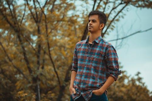 Foto profissional grátis de 50 mm, cerceta, cerceta alaranjada, cores do outono