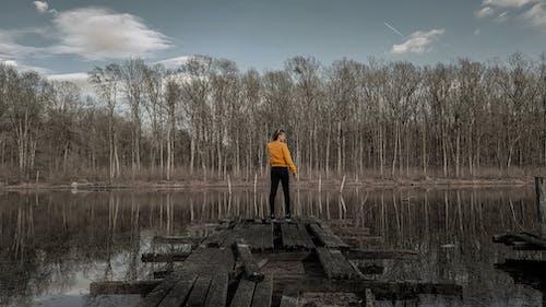 Imagine de stoc gratuită din arc, fată, frumusețe naturală, lacuri