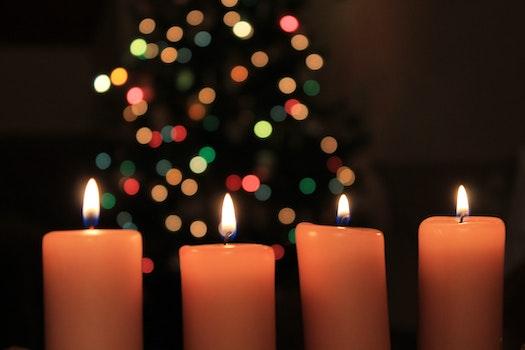 Free stock photo of light, night, winter, fire