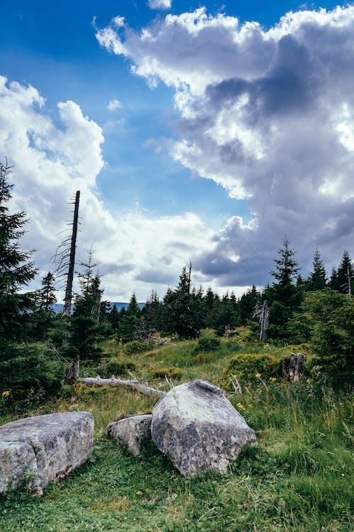 Gratis lagerfoto af bjerge, erfaring, europa, eventyr