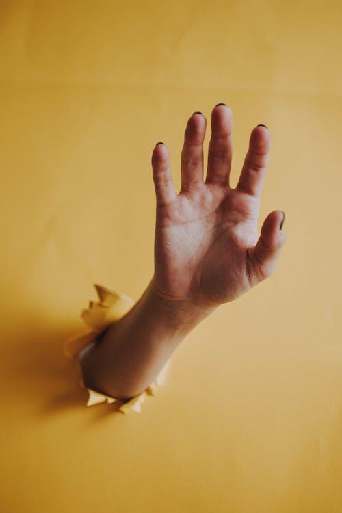 великий палець, великий план, всередині