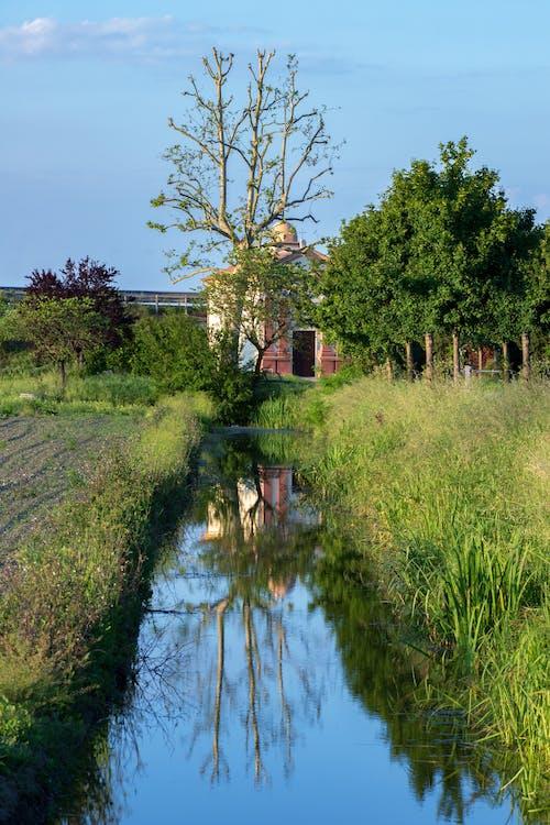 Бесплатное стоковое фото с отражение в зеркале, отражения, церковь