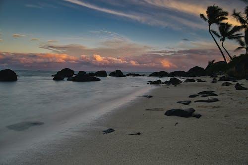 Ilmainen kuvapankkikuva tunnisteilla kaunis auringonlasku, kivet, palmupuut, pilvet