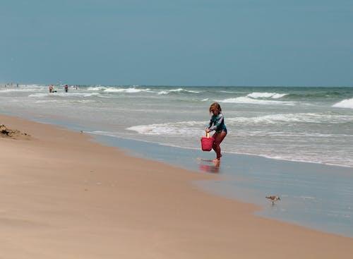 Foto stok gratis #outdoorchallenge, air, biru, burung-burung
