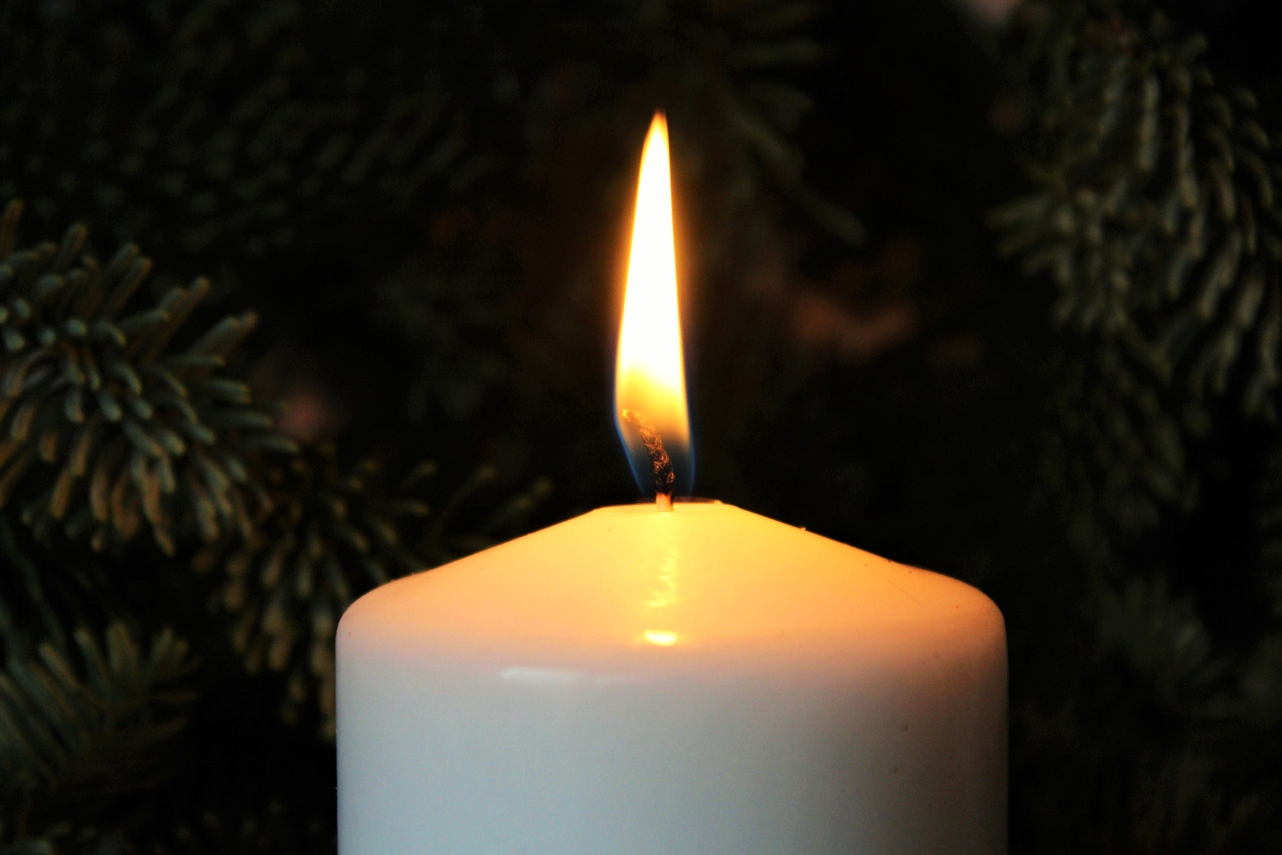 Free stock photo of candlelight, candle, flame, illuminated