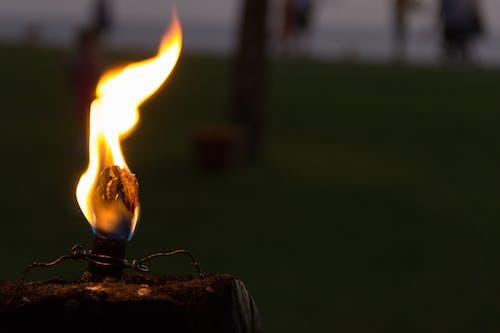 Kostenloses Stock Foto zu abend, brand, brennen, dunkel