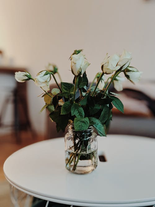White Petaled Flowers in Clear Glass Mug on Wooden Table