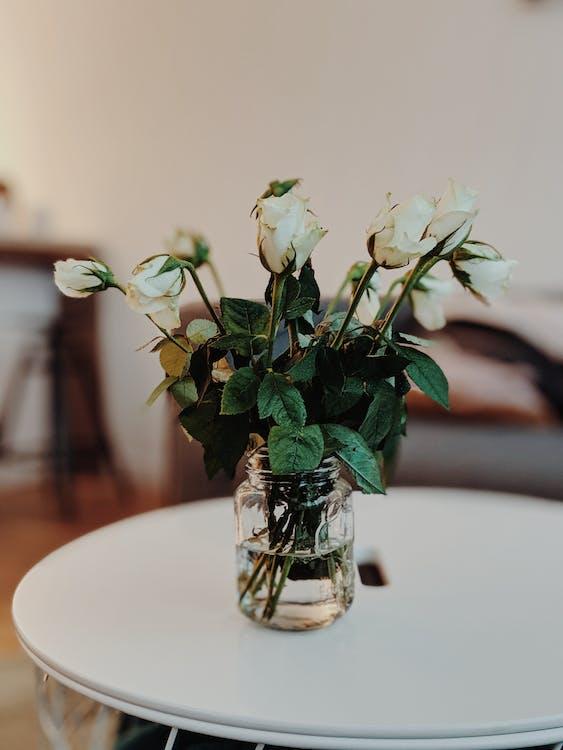 acasă, aranjament floral, borcan