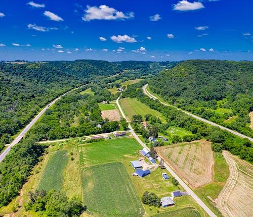 Photos gratuites de aérien, agriculture, arbres, campagne