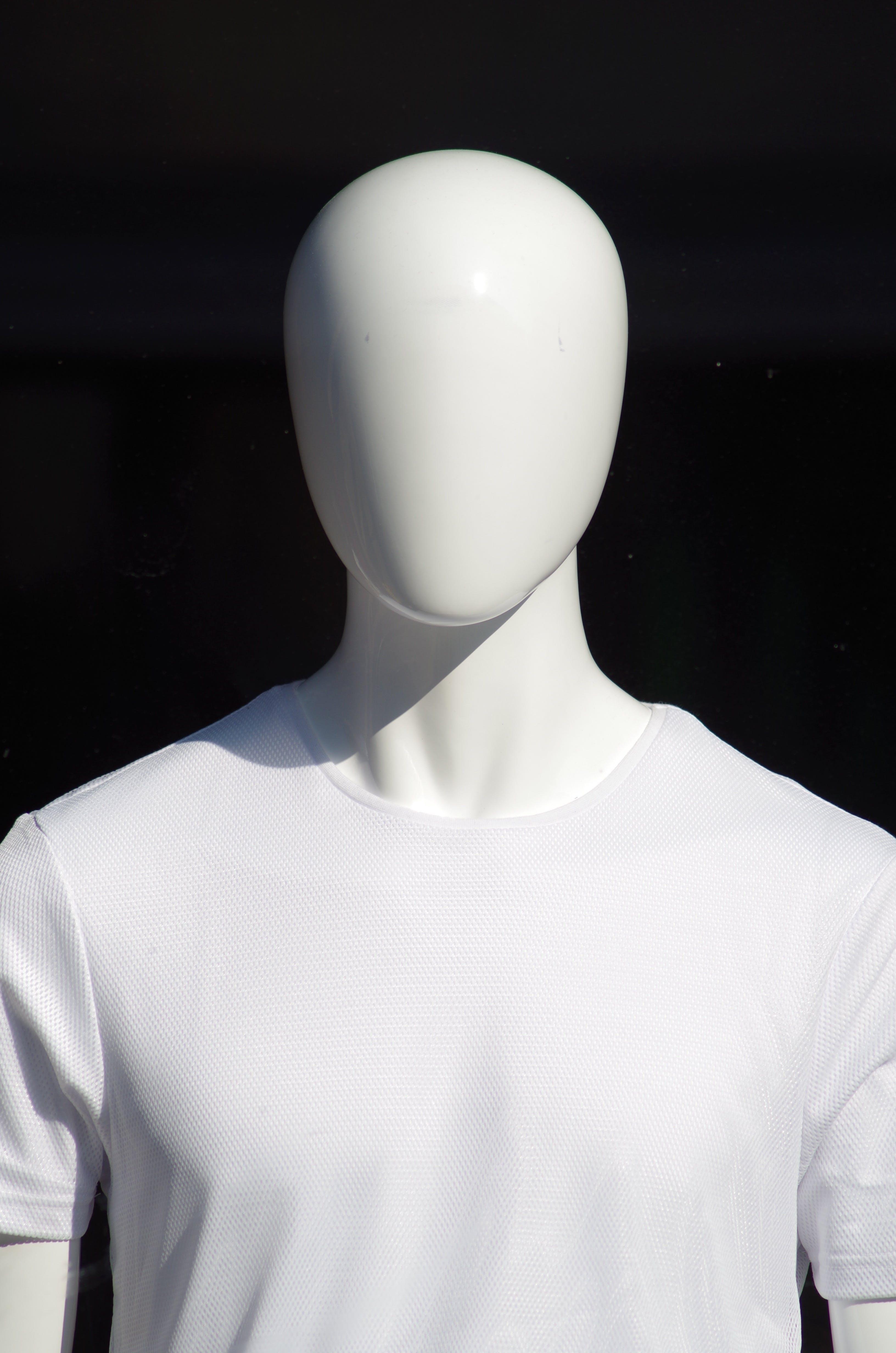 Free stock photo of fashion, display, head, store