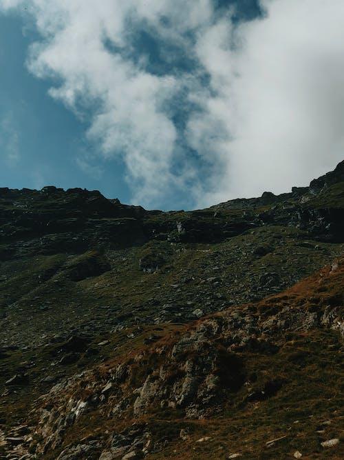 Бесплатное стоковое фото с гора, дневной свет, живописный, зеленый