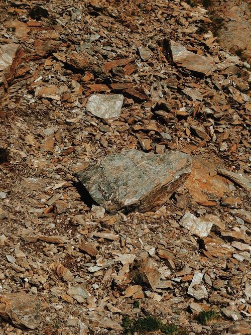 土壌, 地表, 地面, 岩の無料の写真素材