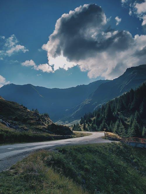 Darmowe zdjęcie z galerii z droga, góra, krajobraz, kręta droga