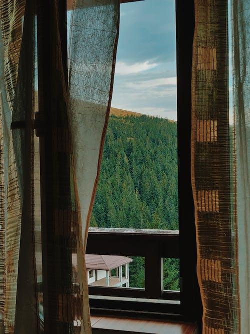 Δωρεάν στοκ φωτογραφιών με αρχιτεκτονική, δέντρα, κουρτίνα, κτήριο