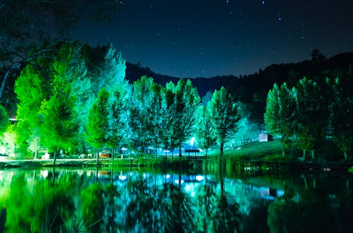 Free stock photo of green, lake, night