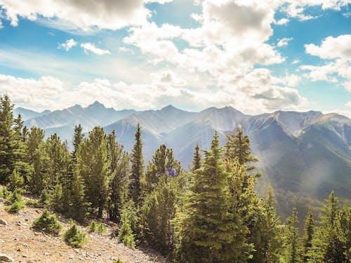 Free stock photo of beauty, bliss, blue sky, canada