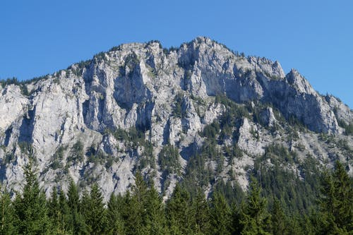 Mountain Near Trees