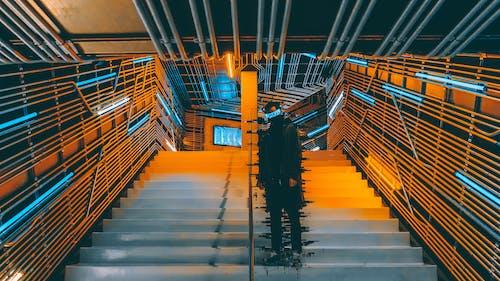 おとこ, 人, 未来的, 階段の無料の写真素材