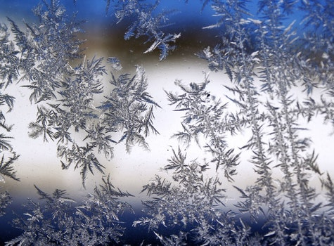 Free stock photo of cold, snow, winter, glass