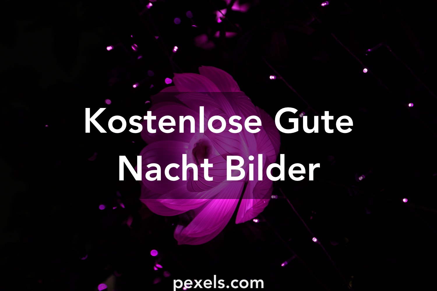 1000 gute nacht fotos pexels kostenlose stock fotos. Black Bedroom Furniture Sets. Home Design Ideas
