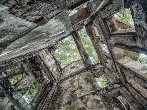 Darmowe zdjęcie z galerii z drzewo, duch, opuszczony budynek