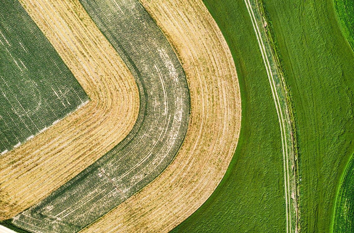 การเกษตร, จากข้างบน, ชนบท