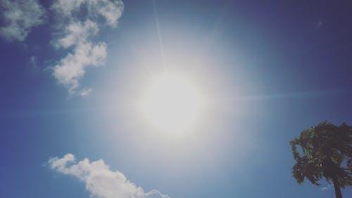 skylover, 堡王太子, 夏天, 太陽 的 免費圖庫相片