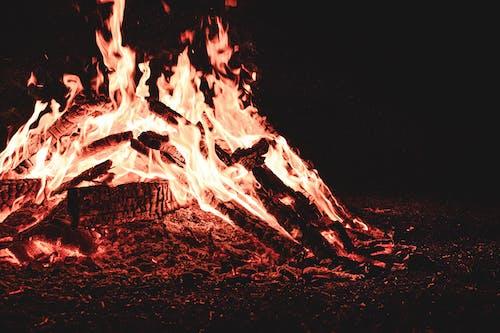 Free stock photo of black, blaze, campfire