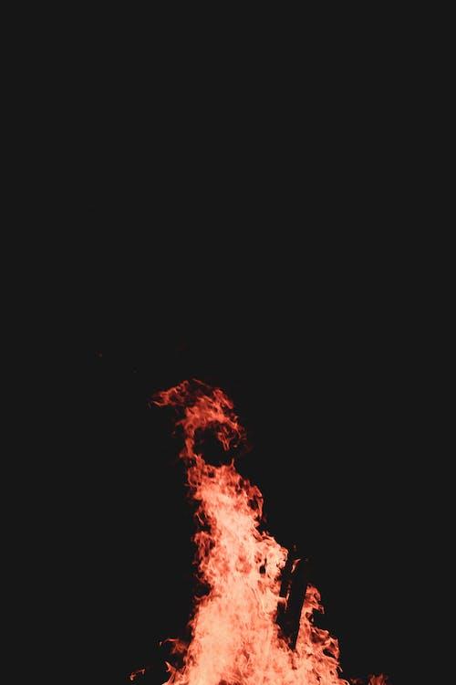 Free stock photo of black, blaze, campfire, fire