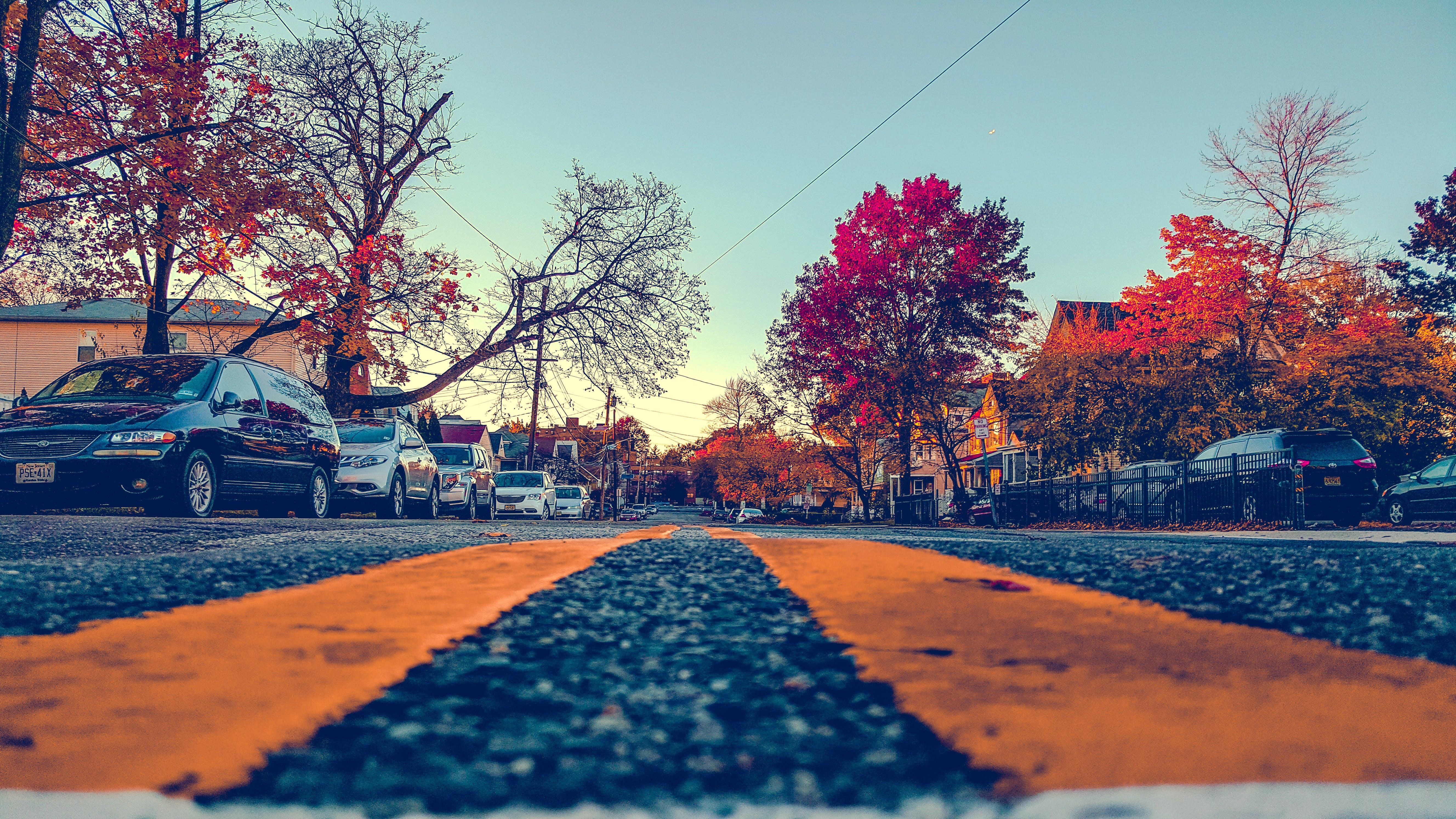Yellow Painted Pedestrian Lane
