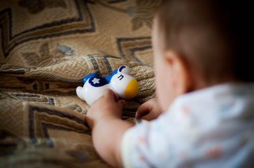 Бесплатное стоковое фото с детская игрушка, игрушечный конь, ребенок