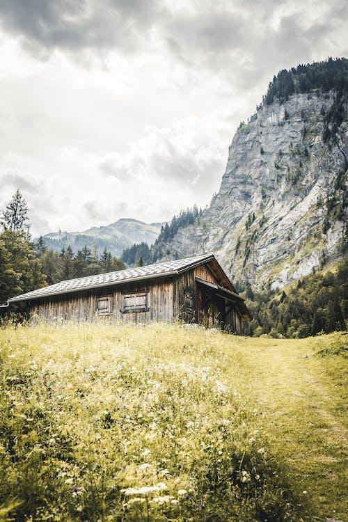 Kostnadsfri bild av berg, frankrike, gräs, hus