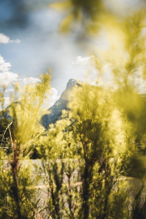 Kostenloses Stock Foto zu ambiant, berge, berggipfel, bergnatur