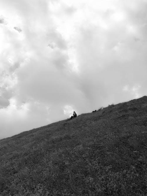 Fotos de stock gratuitas de al aire libre, blanco y negro, caminar, césped
