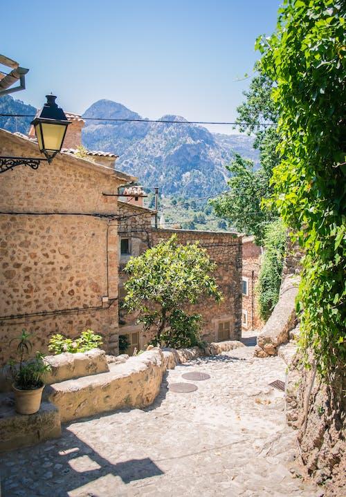 ağaçlar, bakmak, dağ, eski kasaba içeren Ücretsiz stok fotoğraf