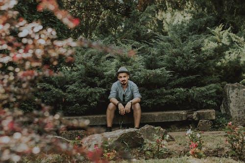 Ảnh lưu trữ miễn phí về công viên, một mình, người, vườn