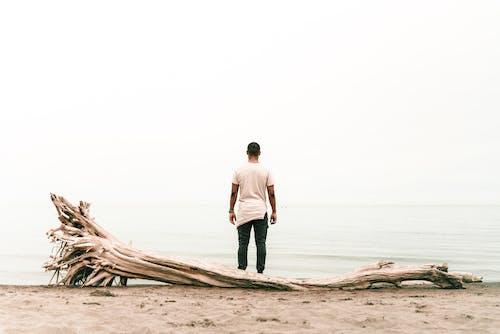 Immagine gratuita di bagnasciuga, corpo d'acqua, da solo, in piedi