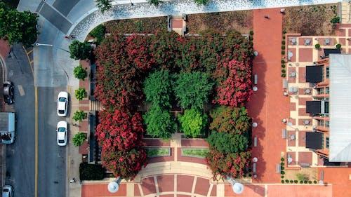 Darmowe zdjęcie z galerii z budynek, park, ulica, widok z lotu ptaka