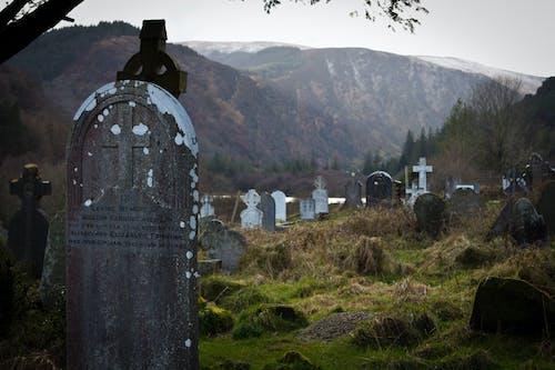 Ilmainen kuvapankkikuva tunnisteilla hautaus, hautausmaa, karmiva