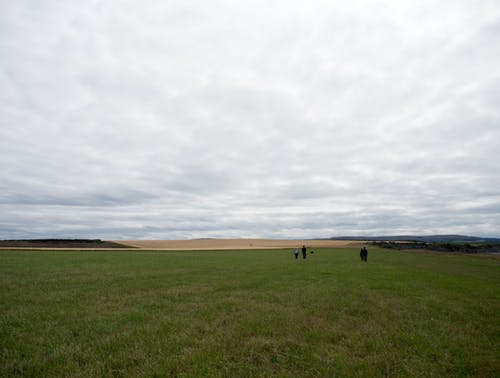 Darmowe zdjęcie z galerii z chmury, chodzić, ludzie, niebo
