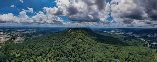 Immagine gratuita di alberi, ambiente, cielo, esterno