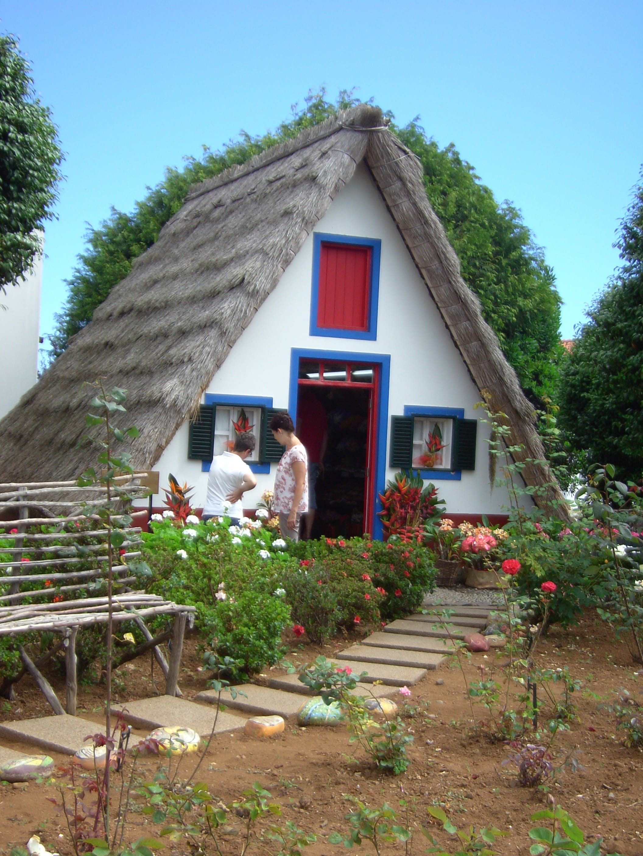 Free stock photo of holiday, summer, garden, island