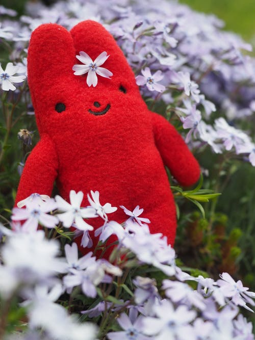 Close-Up Photo of Stuffed Toy Near Flowers