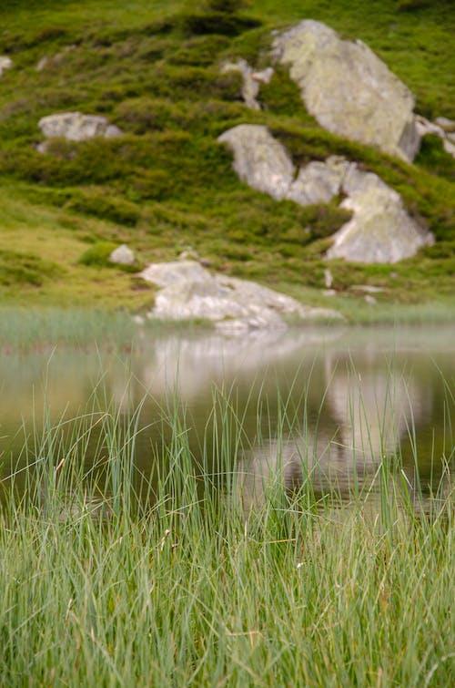 Gratis lagerfoto af bjerg, bjergsø, græs, randonnã © e
