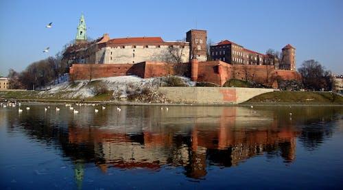 克拉科夫, 博物館, 城堡, 波蘭 的 免費圖庫相片