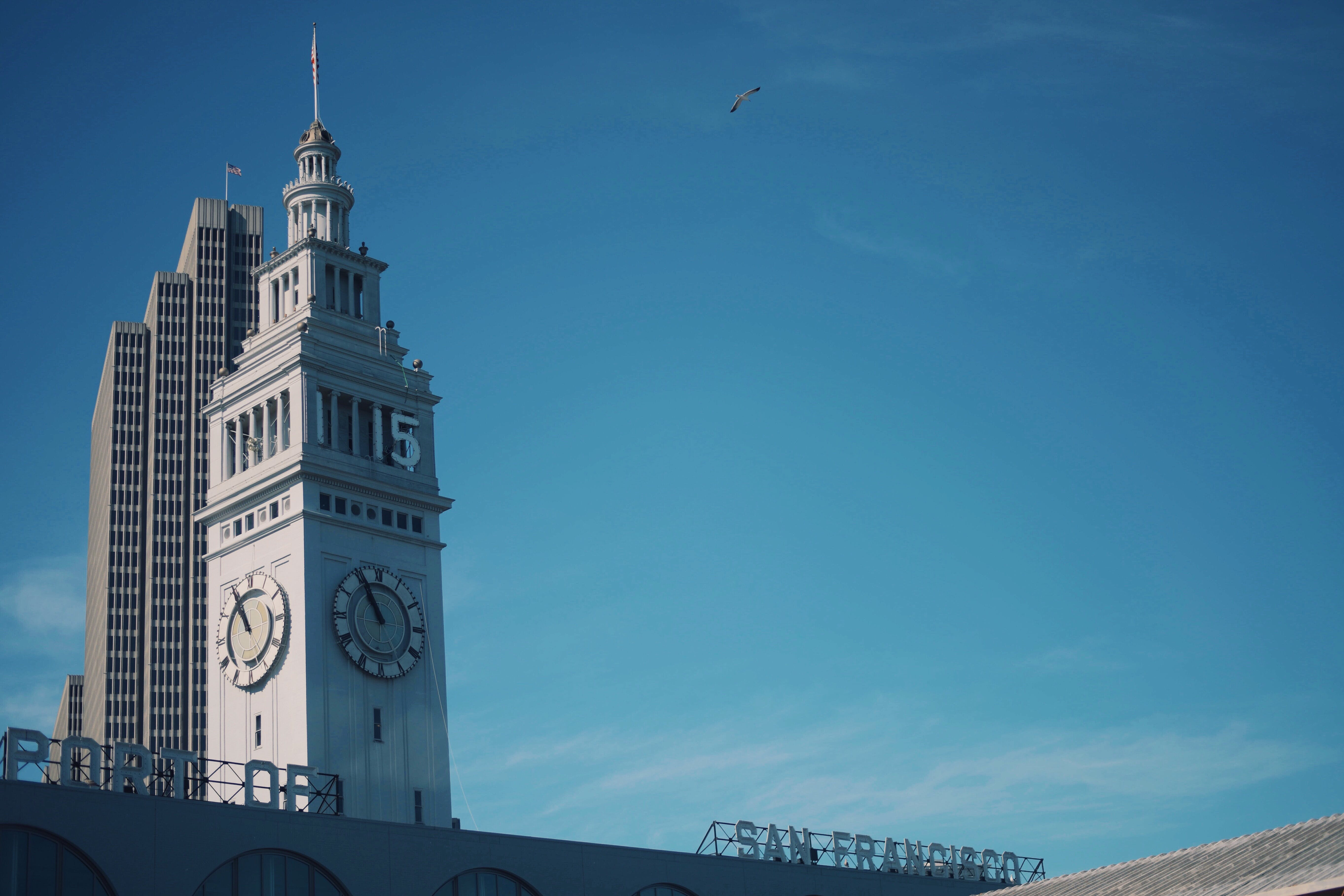 サンフランシスコ, シティ, スカイライン, タワーの無料の写真素材